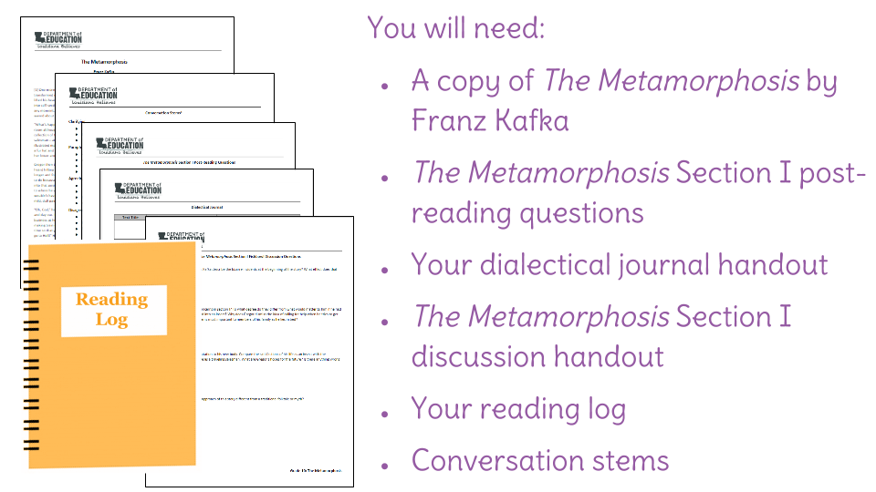the metamorphosis essay questions